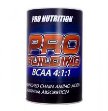 Pro Nutrition Pro Building 500 g